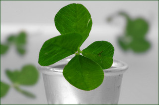 Luck and business leadership